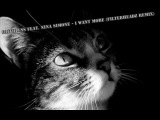 Faithless feat. Nina Simone - I Want More (Filterheadz Remix)