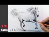 Как нарисовать коня (лошадь) карандашом Поэтапный урок с объяснением!