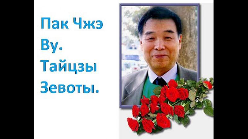 Профессор Пак Чжэ Ву. Тайцзы Зевоты.