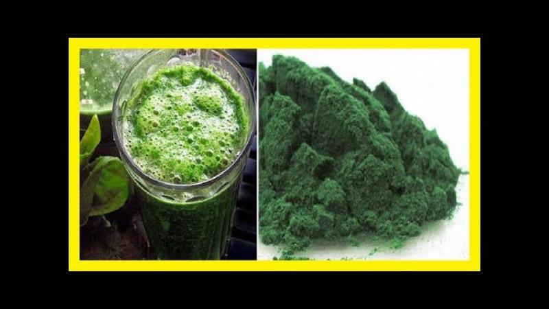 Este polvo tiene más antioxidantes que los arándanos más hierro que la espinaca y más vitaminas que