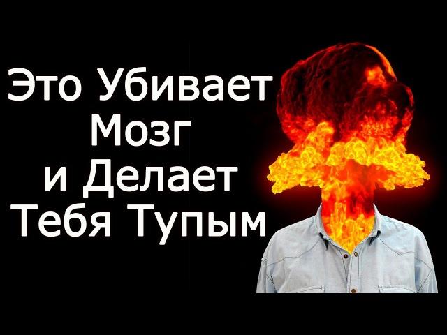10 убийц мозга, делающих тебя тупым – Что убивает и разрушает наш мозг, мешая стать умным