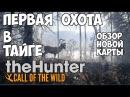 TheHunter Call of the Wild - Первая охота в тайге. Обзор обновления!