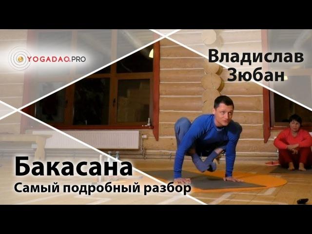 Отстройка асан - Бакасана (самый подробный разбор) - Влад Зюбан