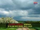Cantece populare romanesti - Sa-mi canti cobzar ( Karaoke )