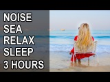Live sounds of nature, sound of the sea, waves and seagulls for deep sleep