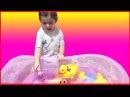 Oyuncaklarımızı Havuzda Yüzdürdük Prenses Sofia Denz Kızı Şarkı Söyledi (Eğlenceli Çocuk Videosu)