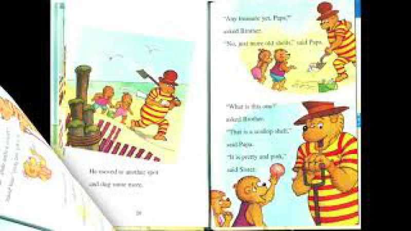 The Berenstain Bears' Seashore Treasure I Read Aloud Picture Book