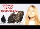 Максим ФАДЕЕВ Григорий ЛЕПС Орлы или вороны Кристина Ашмарина