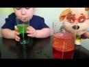 VLOG ОПЫТЫ ДЛЯ ДЕТЕЙ / С Геной БАРБОСКИНЫМ / Эксперимент масло вода краситель шипучий аспирин
