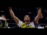 Edson Barboza - The Human Highlight Reel