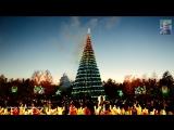 Ёлочка гори ... В Костанае зажгли огни на главной ёлке области.