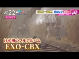 180424 EXO-CBX @  はやドキ! | TBSテレビ  (Hayadoki) - Horololo