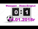 Фаворит(0:1) Ново-Егорье 14.01.2018г