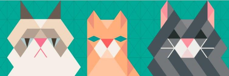 Международная выставка кошек в Перми