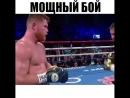 🥊_🎥Golovkin_vs_Alvarez_👊НИЧЬЯ!_🤔_✅_ спорт_ ко_ ko_ бокс_ vinesmma_ самбо_