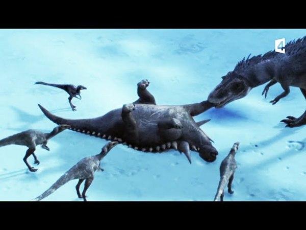L'ankylosaure seul contre tous - ZAPPING SAUVAGE