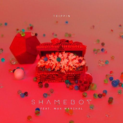 Shameboy альбом Trippin