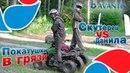 Покатушки в грязи на квадроциклах Avantis Mirage 8/8 Андрей Скутерец и Данила Мастер