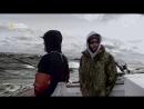 Дикий тунец Север против Юга