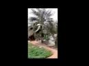 أبيارعلي وسبيل الرجل الصالح منصورالفريدي يروي قصته العلامة محمد المختار ويوثقها ميدانيا عبدالله كابر