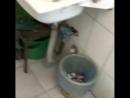 Платный туалет возле мечети [Нетипичная Махачкала]
