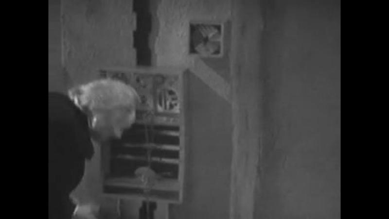 Доктор Кто Классический 1 сезон 2 серия 6 эпизод «Испытание» Русские субтитры