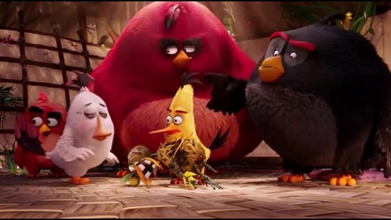 Школа управления своим гневом 2.(Отрывок из мультфильма: Angry Birds в кино).