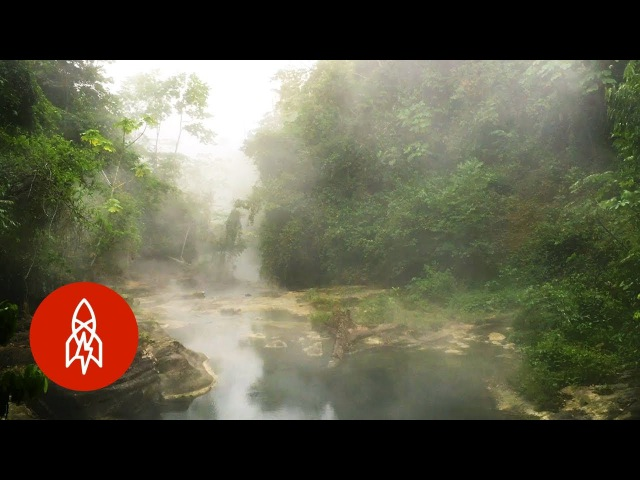 The Amazon's Boiling River Kills Anything That Enters
