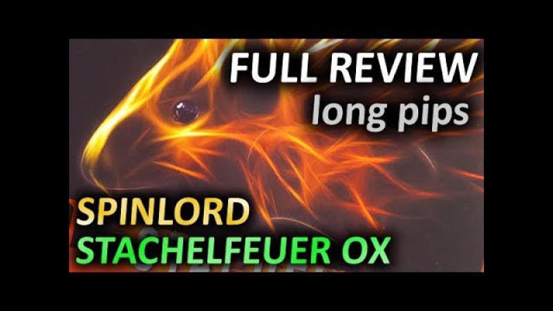 SPINLORD Stachelfeuer OX полный обзор длинных шипов long pips full review