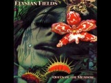 Elysian Fields - Black Acres