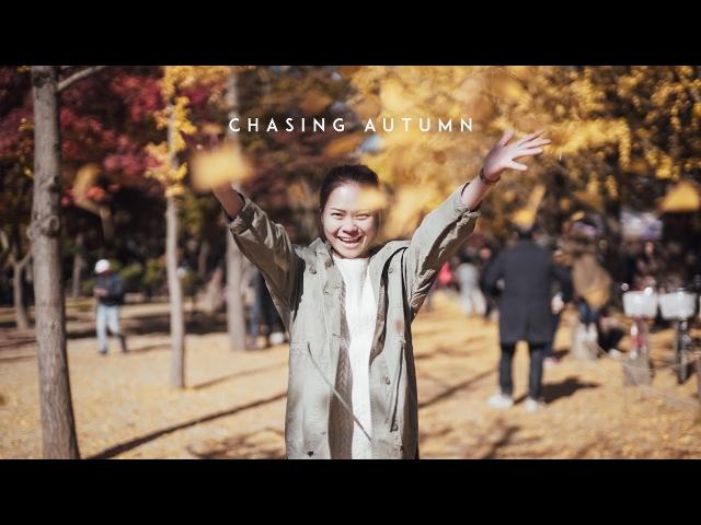 Chasing Autumn   Korea 2016