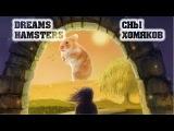 Сны хомяков Dreams hamsters