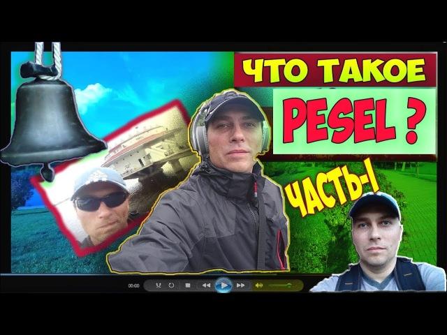 Что Такое PESEL И Как Его Получить? Песель В Польше. 2018. Где Взять PESEL? Мeldunek. Часть-1