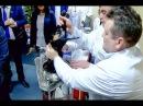 Рогозин и такса Николас. Как интернет ополчился против вице-премьера