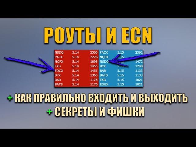 Роуты и ECN - Секреты и фишки