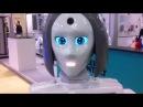 Новости с сишкой Решил по троллить искусственный интеллект