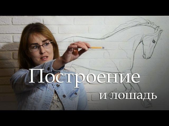 ✓Основы рисования Как делать построение в рисунке