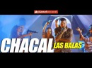 CHACAL - Las Balas Video Oficial by FREDDY LOONS Reggaeton Cubano Cubaton 2018