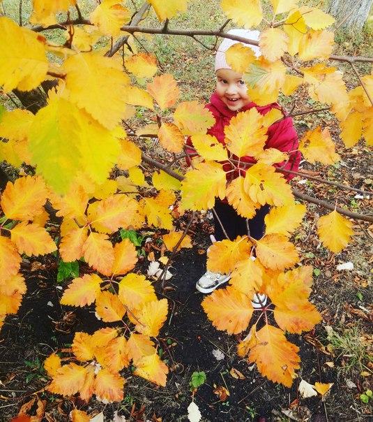 Фото №456240371 со страницы Татьяны Чори