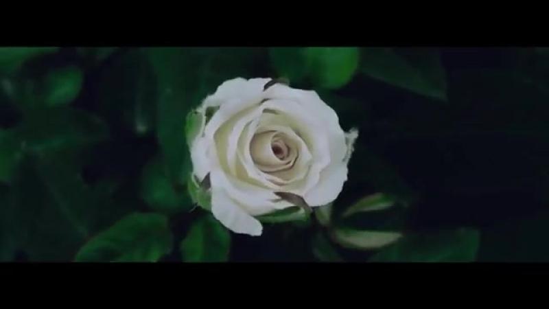 Клип Liam Payne Rita Ora - For You (Fifty Shades Freed) скачать бесплатно смотреть клип онлайн.mp4