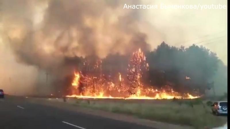 Природный пожар в Каменск-Шахтинском, Ростовская область 15.08.2017