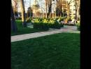 Краснодар февраль жара