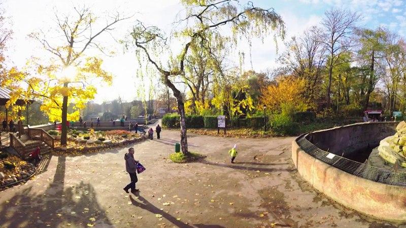 Зоопарк Калининград(Konigsberg)Tour in 360° video Virtual reality