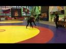 Кровью и потом_05.11.2017_54_финал_Каролина VS Суконщикова