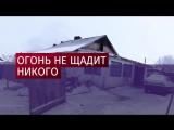 Пятеро детей погибли при пожаре в Новосибирской области