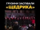 грузини заспівали Щедрик