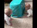 Смешные близнецы