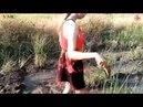 Cô gái xinh đẹp đi bắt cá - Cuộc sống quê tôi 15 | Beautiful girl to catch fish - Life in my country