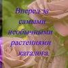 DolinaRoz-Садоводы, Цветоводы, Дачники.
