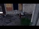 Assassins Lore Леонардо да Винчи